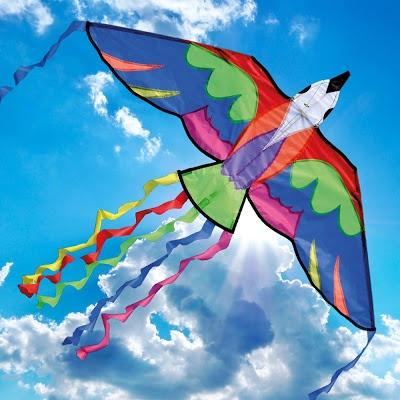 kite designs 31