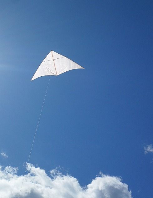 kite designs 4