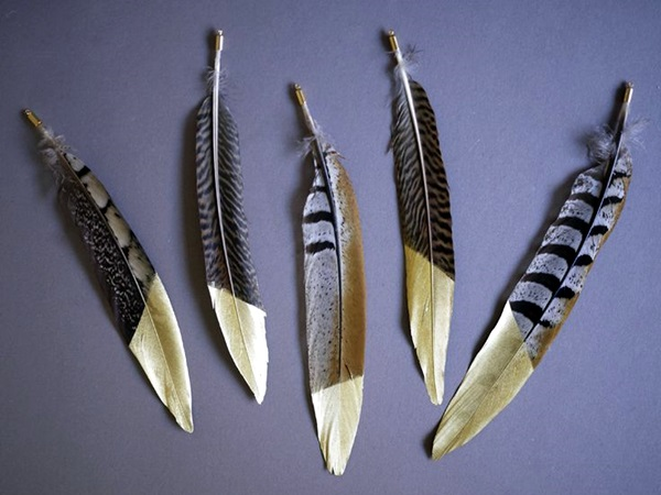 An Amazing Hobby of painted feathers (27)