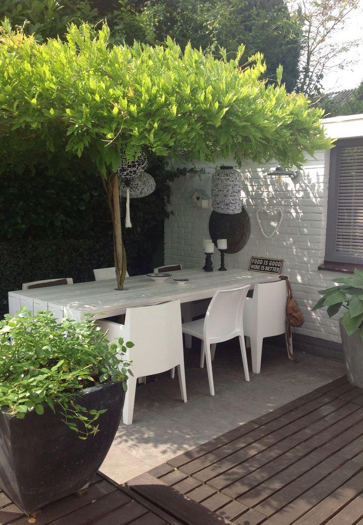 garden chair 20