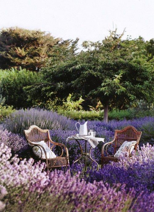 garden chair 27