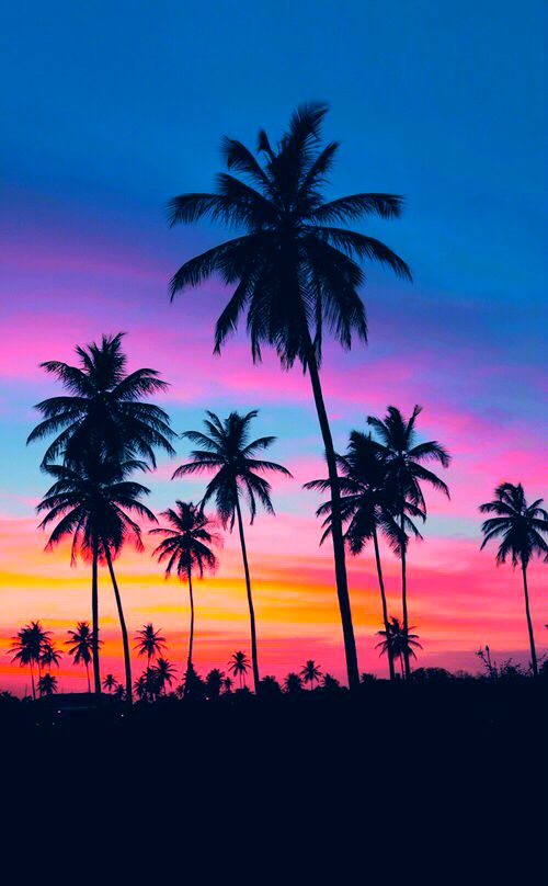 sunset photography 1