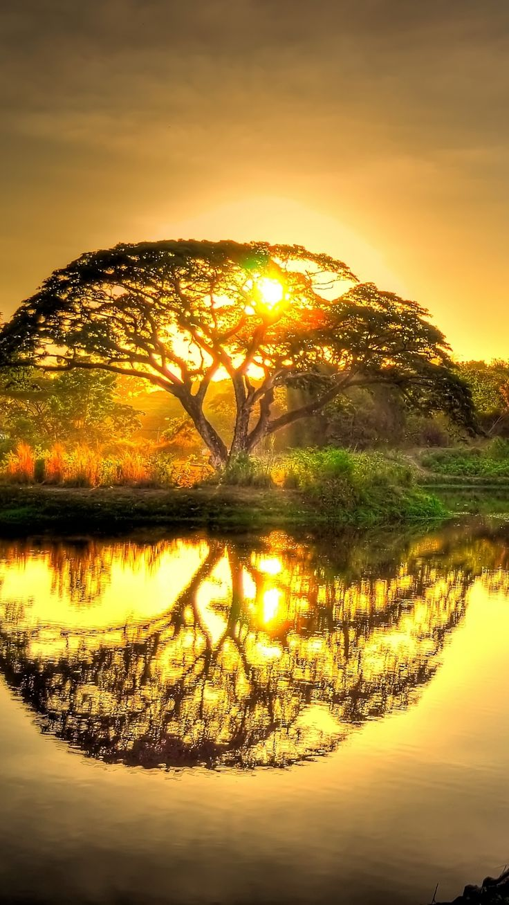 sunset photography 10