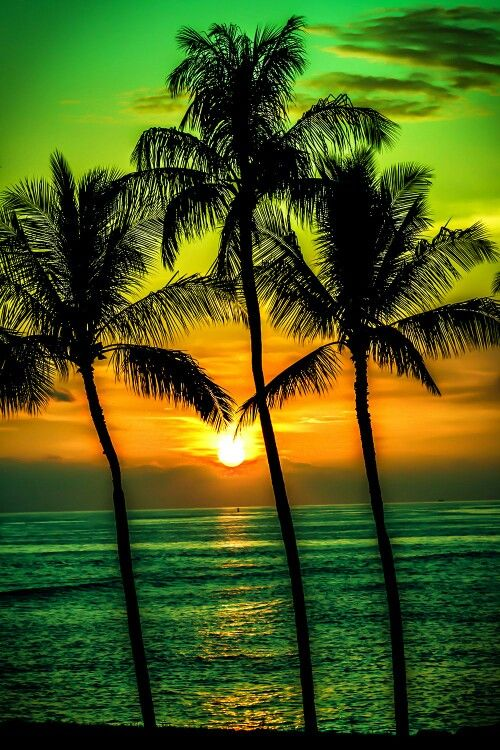 sunset photography 14