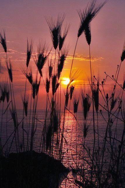 sunset photography 22