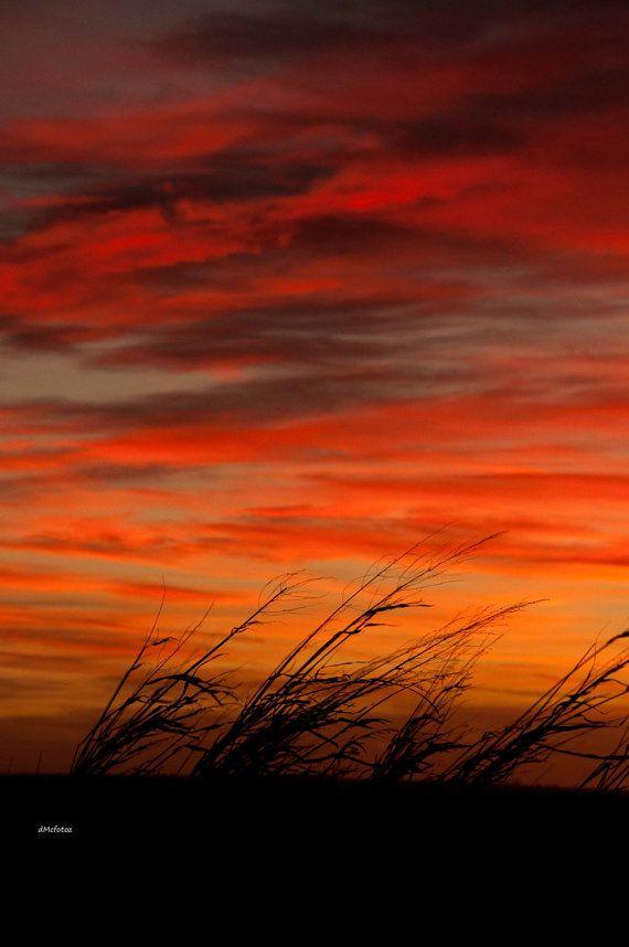 sunset photography 7