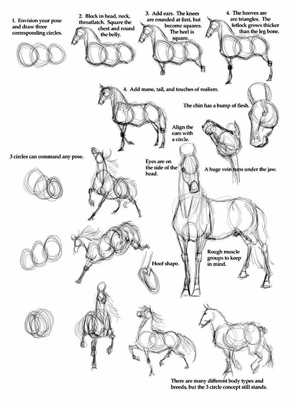 Easy Step by Step Art Drawings to Practice (12)