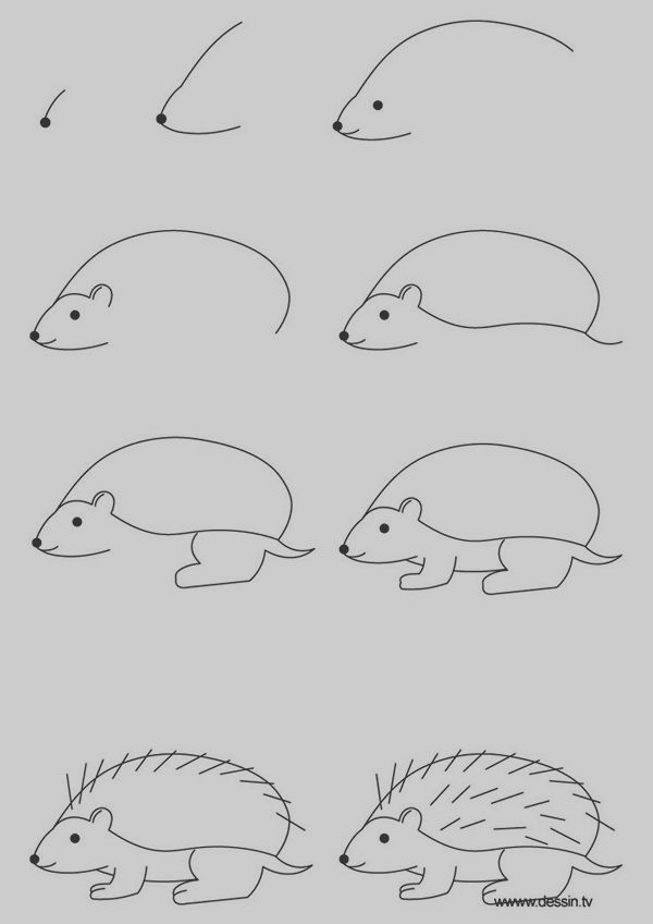 Easy Step by Step Art Drawings to Practice (31)