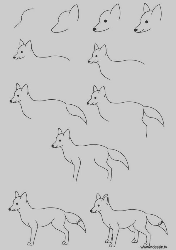 Easy Step by Step Art Drawings to Practice (33)