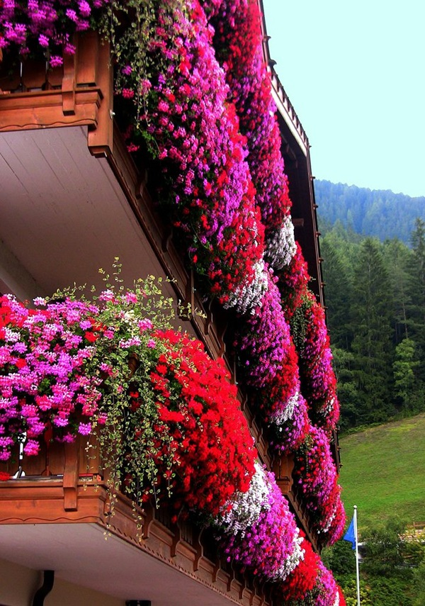 Magical window flower box ideas (11)