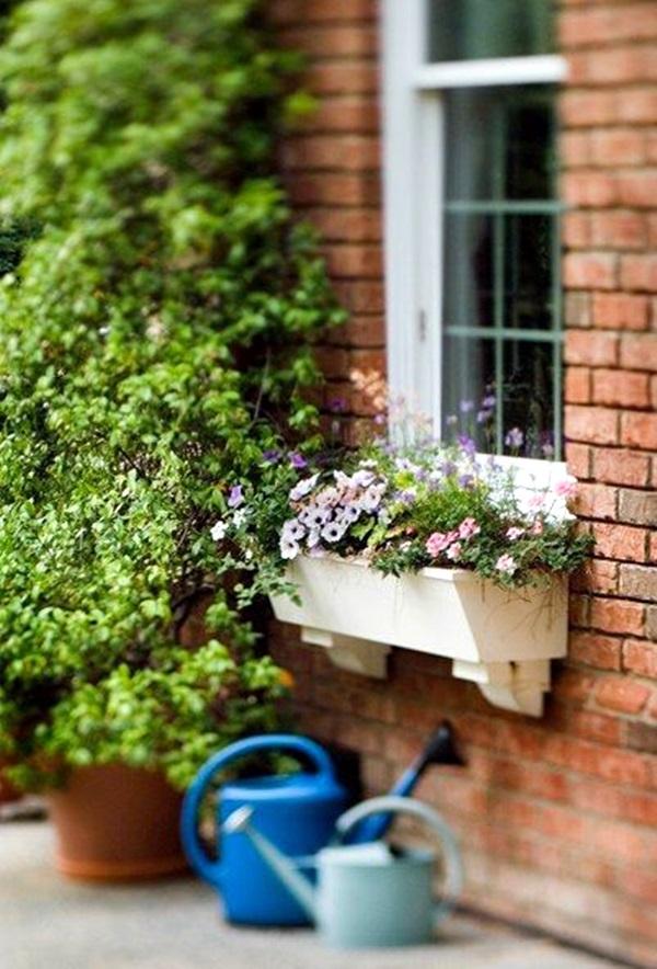 Magical window flower box ideas (14)