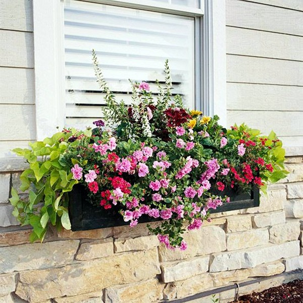 Magical window flower box ideas (16)