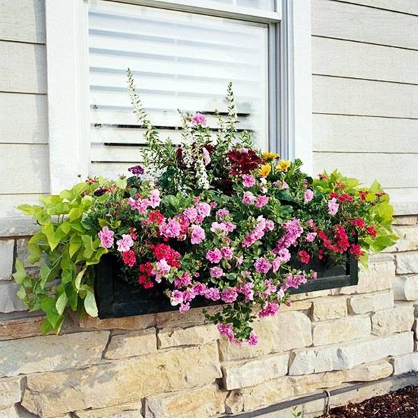 Magical window flower box ideas (16)