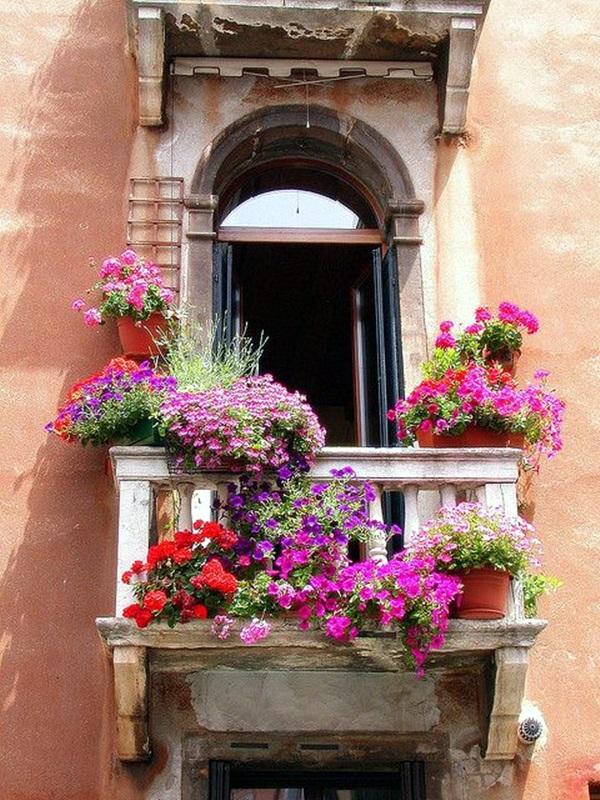 Magical window flower box ideas (18)