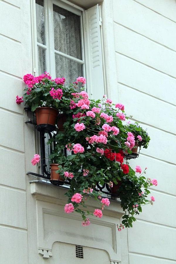Magical window flower box ideas (20)