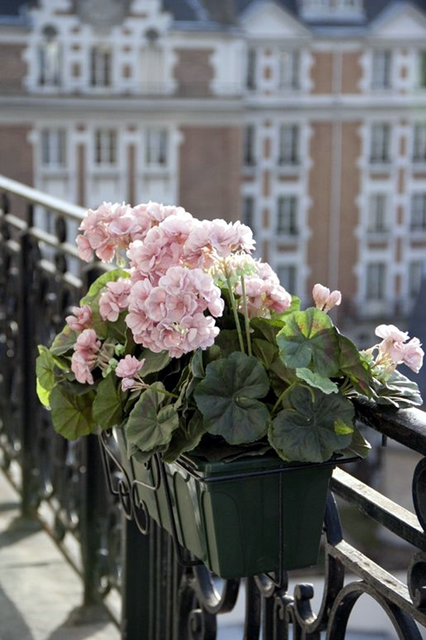 Magical window flower box ideas (22)