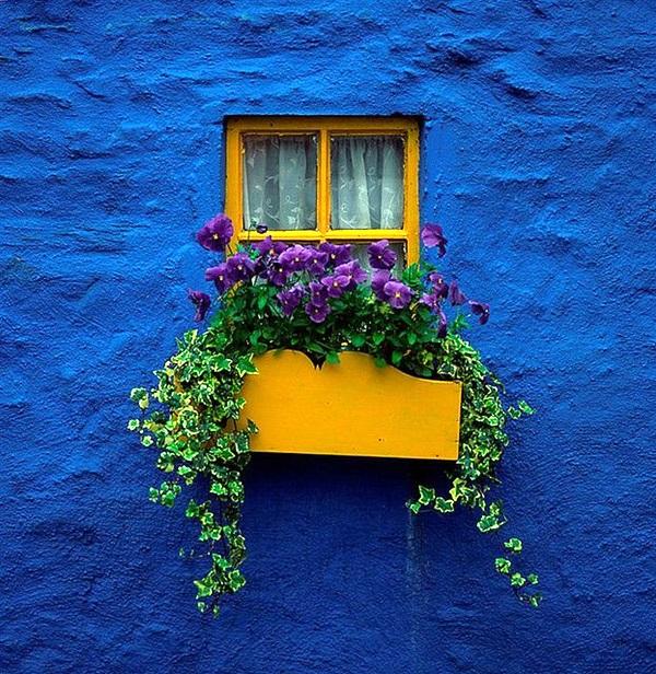 Magical window flower box ideas (23)