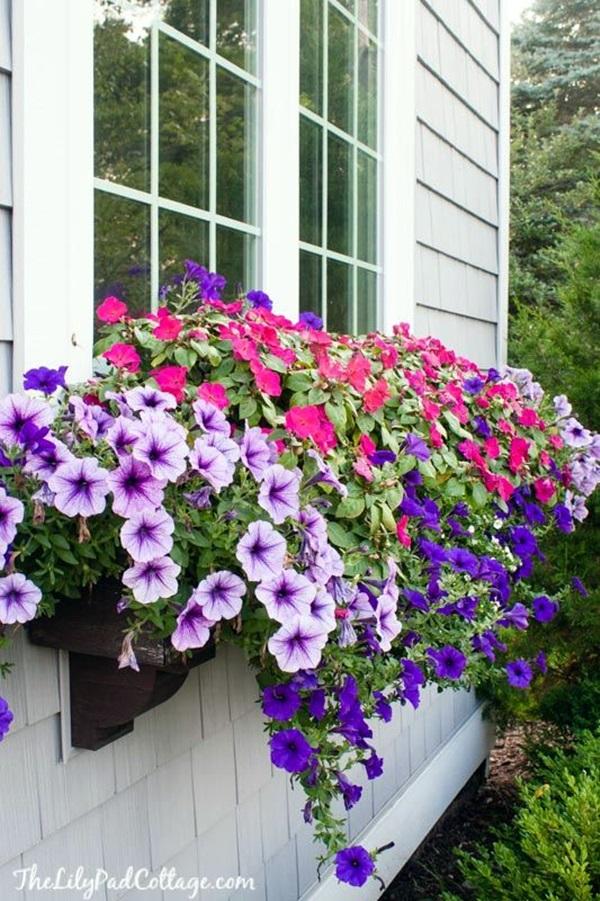 Magical window flower box ideas (25)