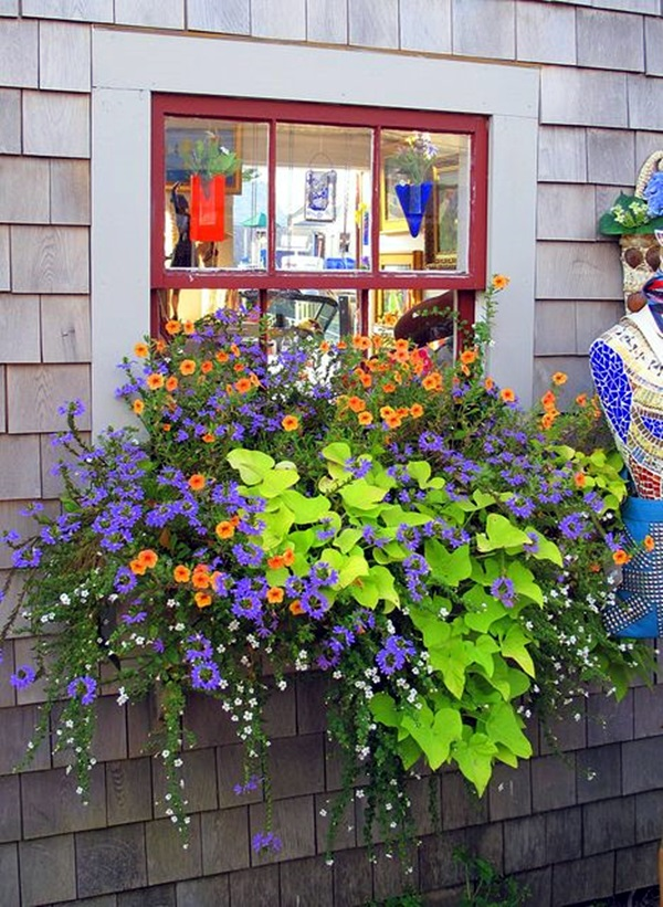 Magical window flower box ideas (29)
