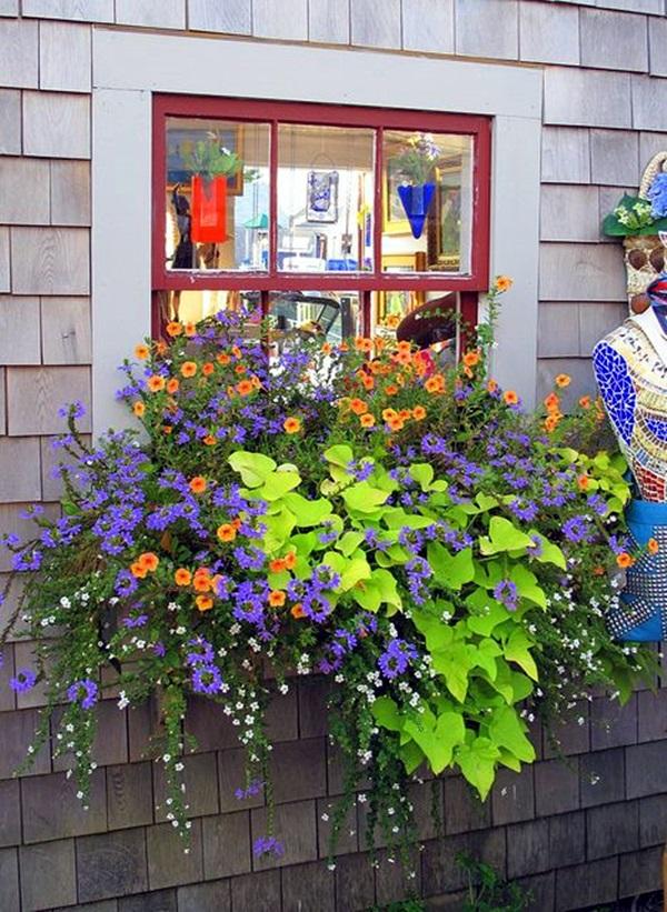 Magical window flower box ideas (29)