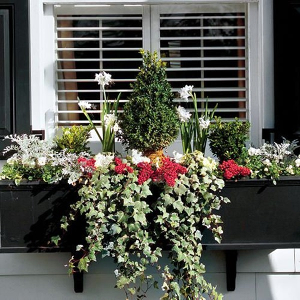 Magical window flower box ideas (30)