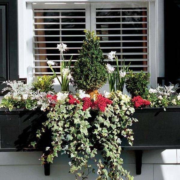 Magical window flower box ideas (30)