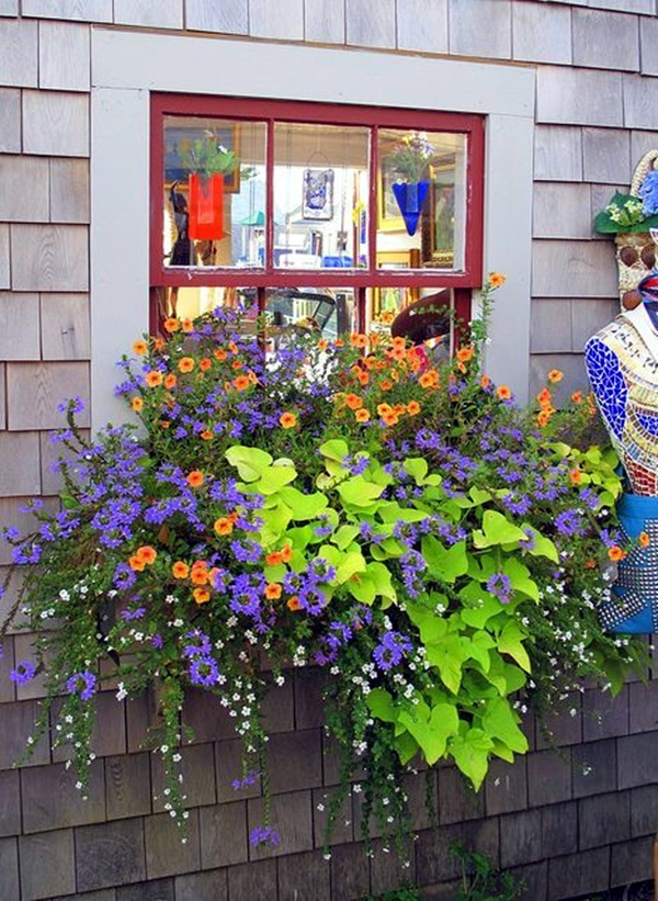 Magical window flower box ideas (31)