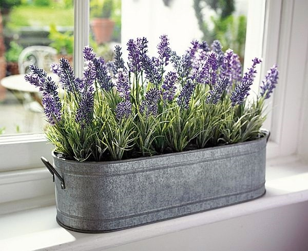 Magical window flower box ideas (32)