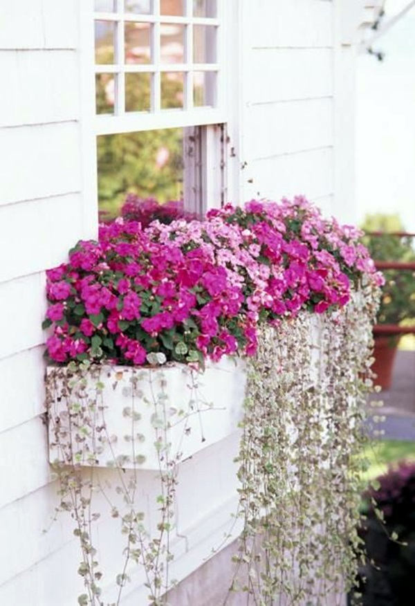 Magical window flower box ideas (36)