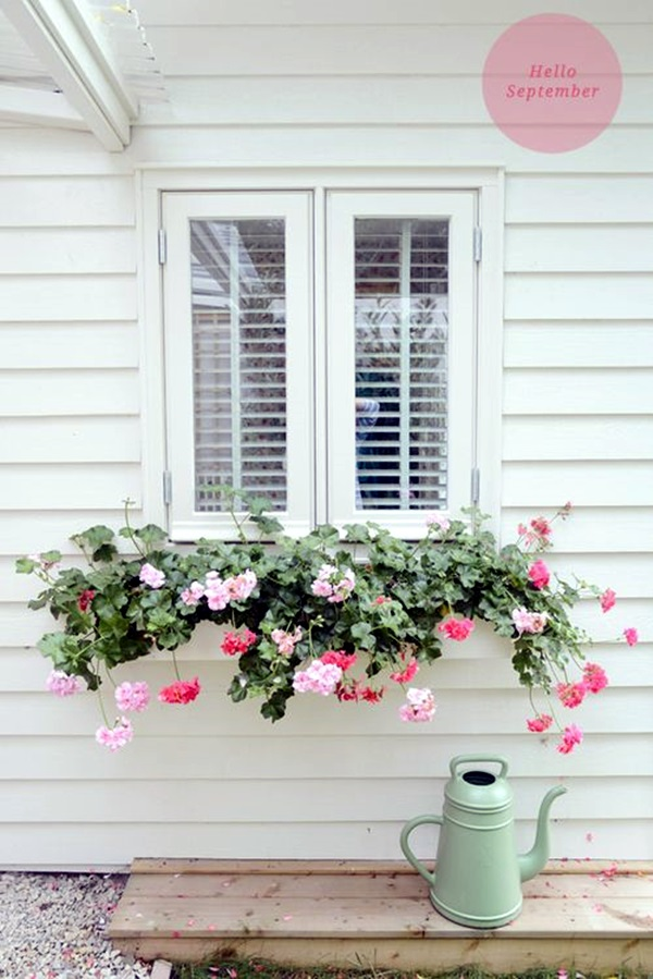 Magical window flower box ideas (38)