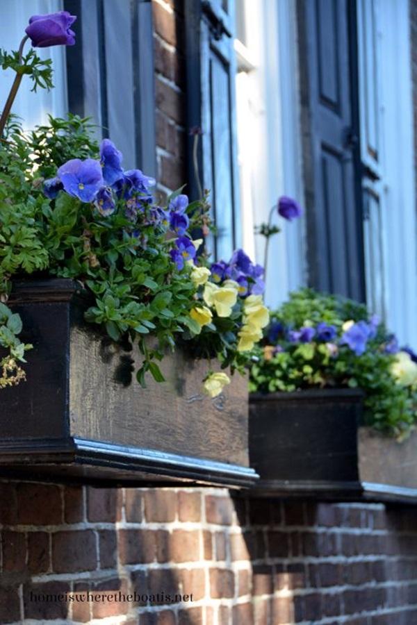 Magical window flower box ideas (4)