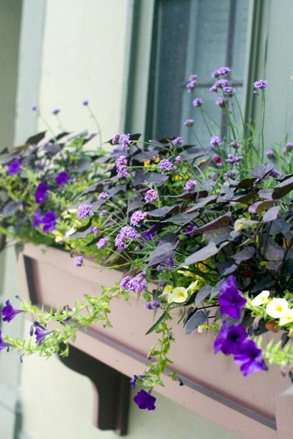 Magical window flower box ideas (40)