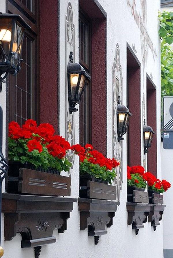 Magical window flower box ideas (7)