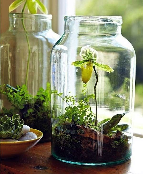 Smart Mini Indoor Garden Ideas (11)