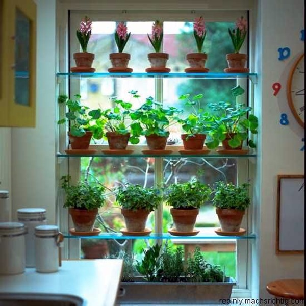 Smart Mini Indoor Garden Ideas (14)