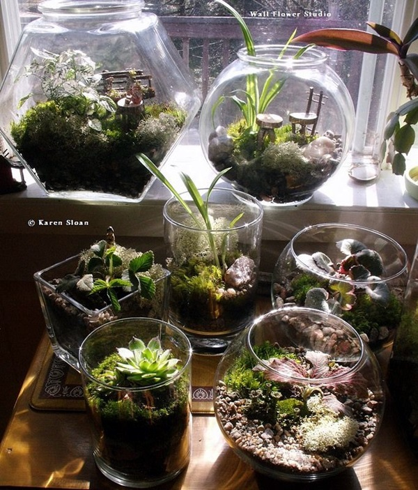 Smart Mini Indoor Garden Ideas (17)