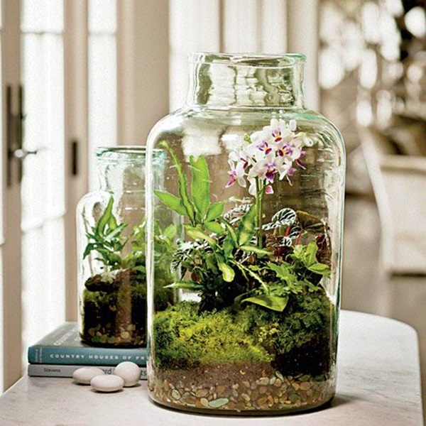 Smart Mini Indoor Garden Ideas (20)