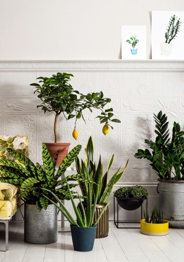 Smart Mini Indoor Garden Ideas (30)