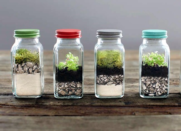 Smart Mini Indoor Garden Ideas (32)