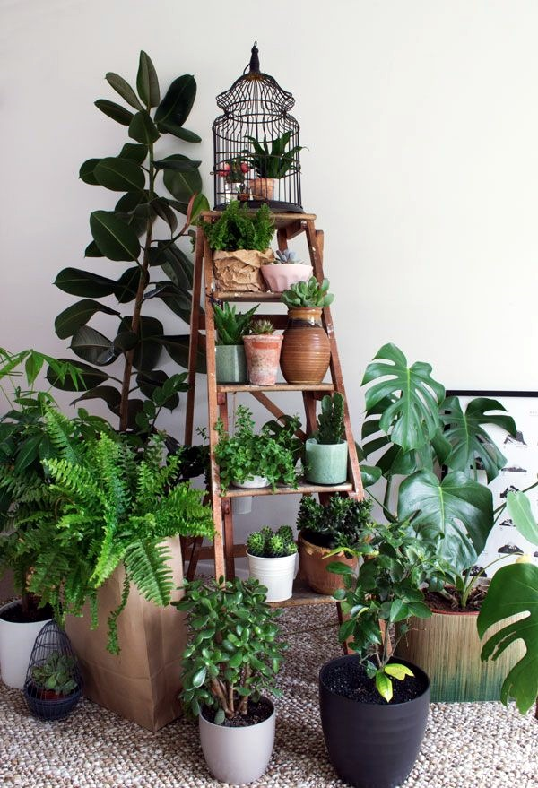 Smart Mini Indoor Garden Ideas (34)