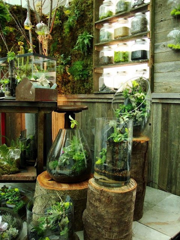 Smart Mini Indoor Garden Ideas (40)