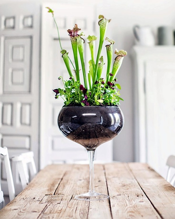 Smart Mini Indoor Garden Ideas (43)