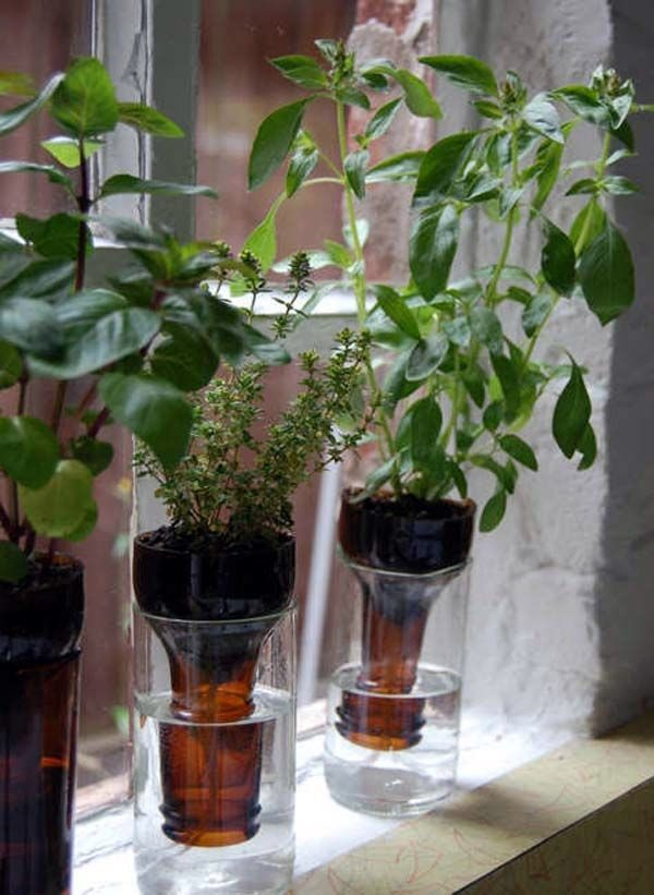 Smart Mini Indoor Garden Ideas (44)