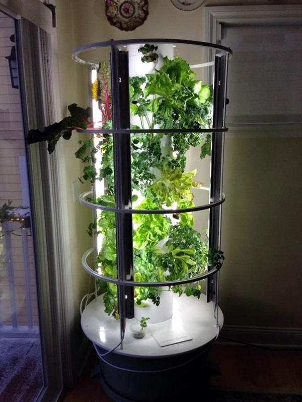 Smart Mini Indoor Garden Ideas (47)