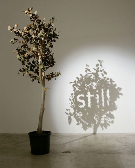 shadow art 18