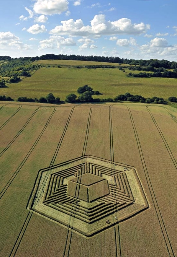 Another World Crop Circle Arts Drawn by Humans (1)