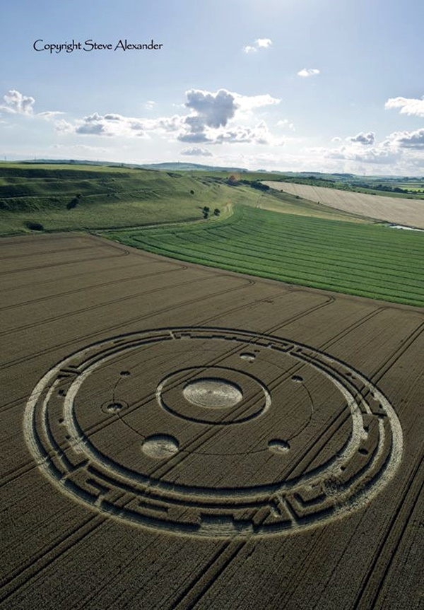 Another World Crop Circle Arts Drawn by Humans (10)