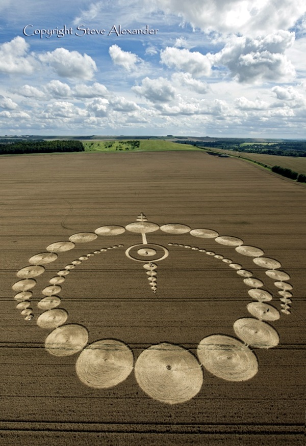 Another World Crop Circle Arts Drawn by Humans (12)