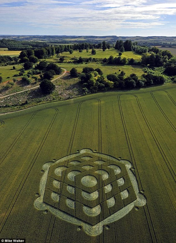 Another World Crop Circle Arts Drawn by Humans (2)