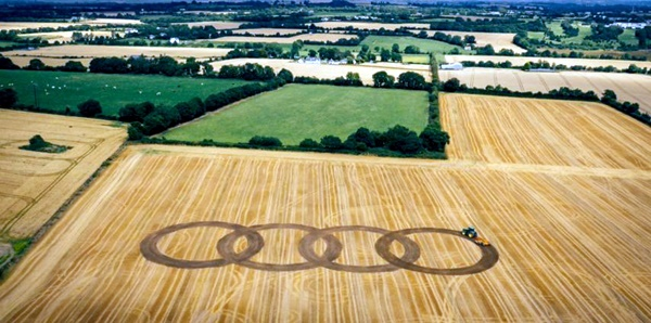Another World Crop Circle Arts Drawn by Humans (25)
